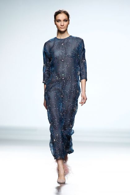 Embroidered organza long dress